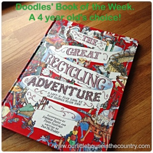 D's book of the week - The Great Recycling Adveture