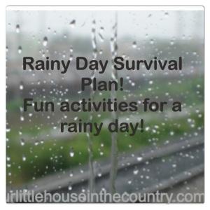 Rainy Day Survival Plan