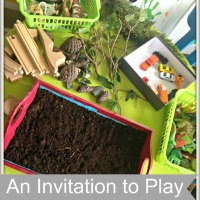 An Invitation to Play - Compost Tray, Found Objects from Nature and Toys