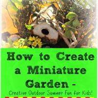 Miniature Gardens - Outdoor Summer Fun!