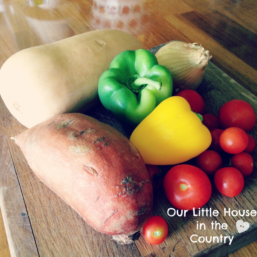 Yummy Autumn/Fall Homemade Vegetable Soup - a perfect nutritious after school snack - Our Little House in the Country